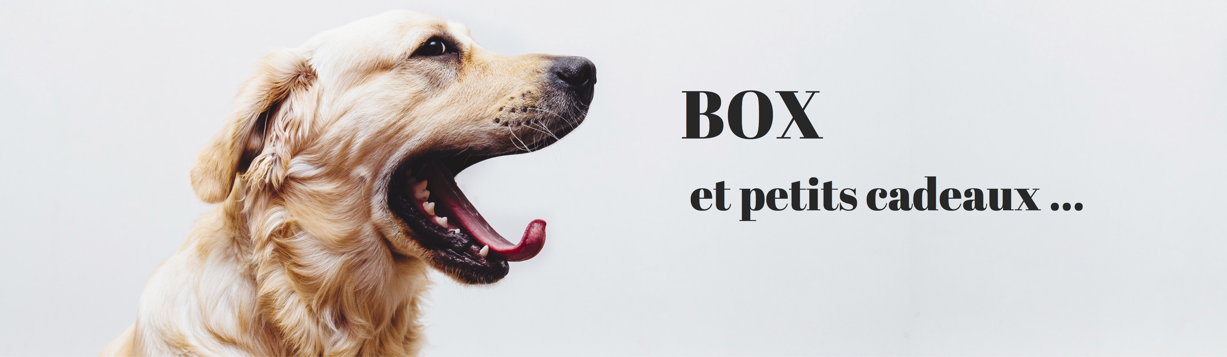 box et cadeaux dog's Kitchen naturel